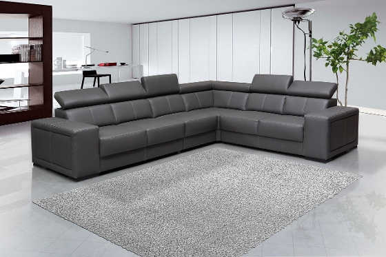 Sectional Sofa with Area Rug
